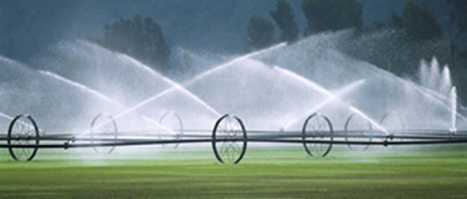 Irrigation & Pond Wells in West Michigan